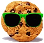 Kod cookies na stronę www