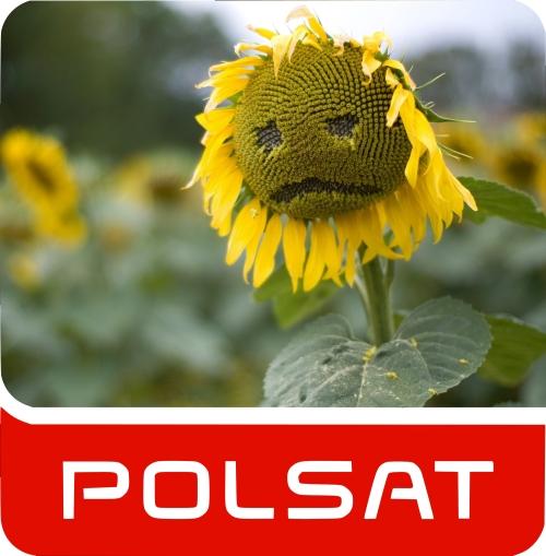 Parodia logo Polsat