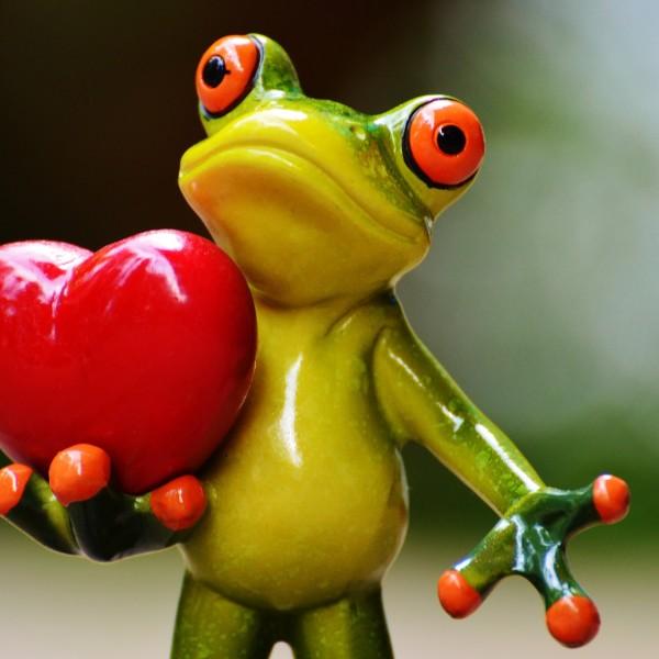 Śmieszna żaba