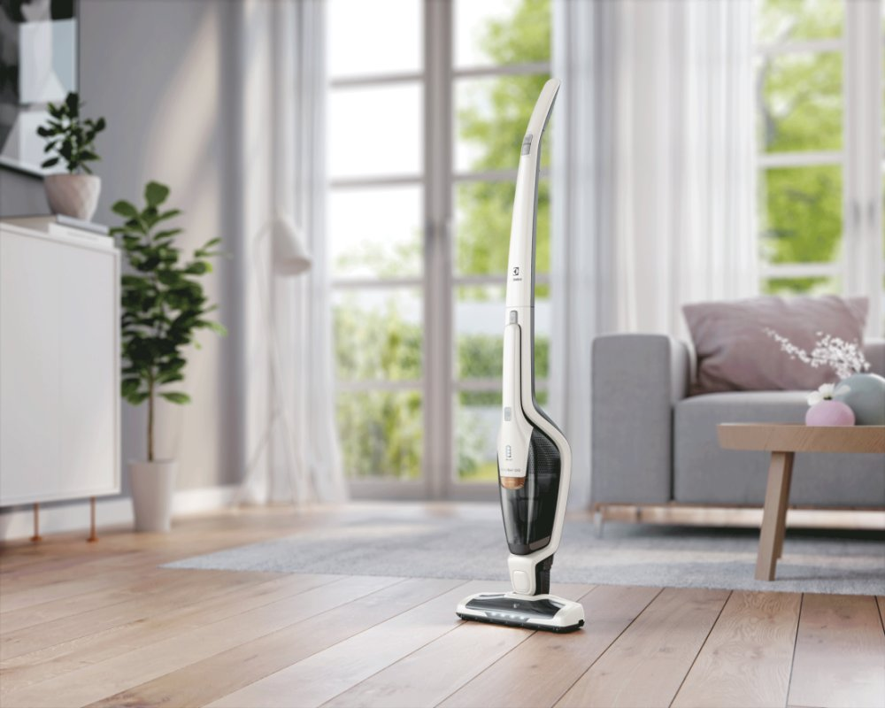 Electrolux Ergorapido Allergy
