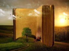 Książki na wakacje i urlop